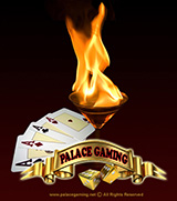 Palace Gaming - Casino Gaming Guide